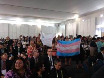 Activistas trans en el Diálogo entre los actores sociales y los representantes de alto nivel de los gobiernos - 12 de abril
